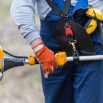 Best Gas Pole Saw Reviews with Buying Guide 2021